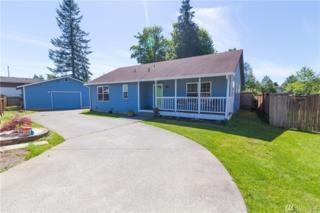 10220 Mountain Loop Hwy, Granite Falls, WA 98252 (#1130795) :: Real Estate Solutions Group