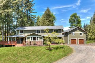 18515 43rd St NE, Snohomish, WA 98290 (#1131021) :: Real Estate Solutions Group