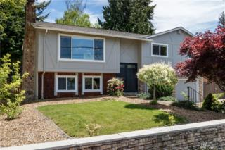 17033 Spruce Wy, Lynnwood, WA 98037 (#1131708) :: Real Estate Solutions Group