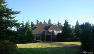 20705 SE 24th St, Sammamish, WA 98075 (#1131965) :: The Key Team