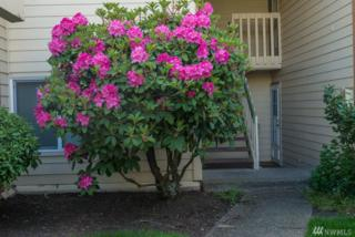 23609 112th Ave SE C102, Kent, WA 98031 (#1131997) :: Real Estate Solutions Group
