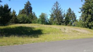 28 Espy Ridge, Oysterville, WA 98641 (#1133529) :: The DiBello Real Estate Group