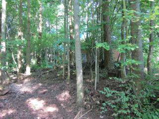0 Lot 90 Eliza Island, Bellingham, WA 98229 (#272299) :: Ben Kinney Real Estate Team