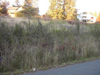 151 Combs St, Port Townsend, WA 98368 (#287943) :: Ben Kinney Real Estate Team