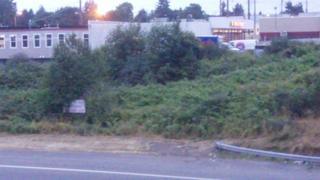 0 S 152nd St, Burien, WA 98148 (#424385) :: Ben Kinney Real Estate Team
