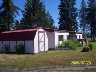 11 Hidden Meadow Lane, Malo, WA 99150 (#426873) :: Ben Kinney Real Estate Team