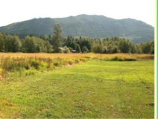 0-XXX Frost Creek Rd, Glenoma, WA 98336 (#443469) :: Ben Kinney Real Estate Team