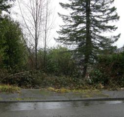 828 Terrace Ave, Aberdeen, WA 98520 (#487817) :: Ben Kinney Real Estate Team