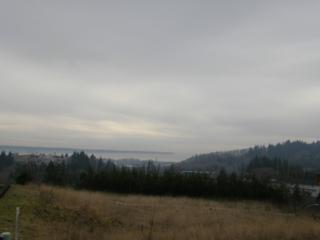 1523 Harbor View Dr, Aberdeen, WA 98520 (#576737) :: Ben Kinney Real Estate Team