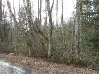 1213 W Roanoke St, Centralia, WA 98531 (#593781) :: Ben Kinney Real Estate Team