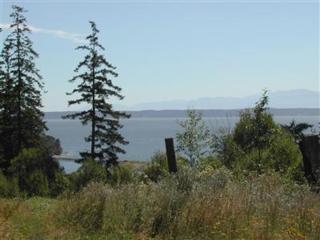 1115 Viewpoint Dr, Oak Harbor, WA 98277 (#621498) :: Ben Kinney Real Estate Team