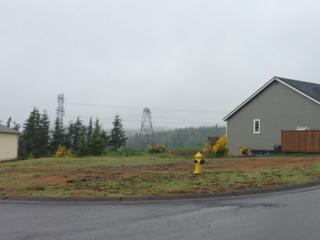 1801 Harborview Dr, Aberdeen, WA 98520 (#640727) :: Ben Kinney Real Estate Team