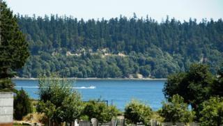 5809 Reid Dr NW, Gig Harbor, WA 98335 (#666037) :: Ben Kinney Real Estate Team