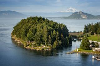 Blakely Island, WA 98222 :: Ben Kinney Real Estate Team