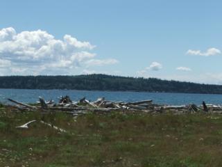 208 Gough Dr, Camano Island, WA 98282 (#815376) :: Ben Kinney Real Estate Team