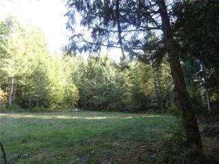 13539 Olympic View Rd NW, Silverdale, WA 98383 (#862147) :: Ben Kinney Real Estate Team