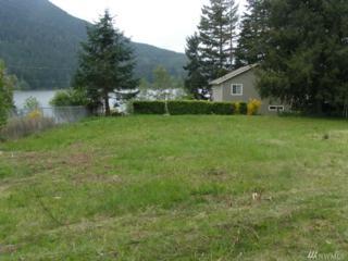 53204 126 Av Ct E, Eatonville, WA 98328 (#869051) :: Ben Kinney Real Estate Team