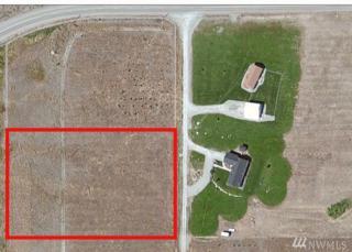 222 Horizon Drive, Tonasket, WA 98855 (#873180) :: Ben Kinney Real Estate Team