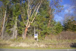 34 Cape George Rd, Port Townsend, WA 98368 (#873828) :: Ben Kinney Real Estate Team