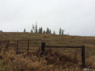 0 Seminary Hill, Centralia, WA 98531 (#878804) :: Ben Kinney Real Estate Team