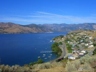 116 Riviera Place, Chelan, WA 98816 (#881128) :: Ben Kinney Real Estate Team