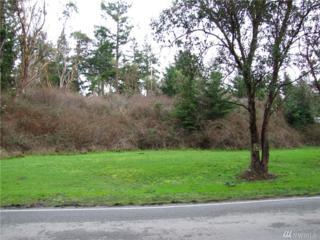 999 Redwood St, Port Townsend, WA 98368 (#883685) :: Ben Kinney Real Estate Team