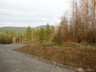 0-Lot 4 Buzzie Lane, Sedro Woolley, WA 98284 (#884797) :: Ben Kinney Real Estate Team