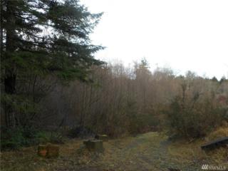 12560 Westbrook Dr SW, Port Orchard, WA 98367 (#887085) :: Ben Kinney Real Estate Team