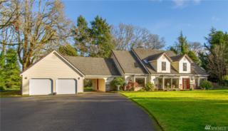 9551 Yelm Hwy SE, Olympia, WA 98513 (#888476) :: Ben Kinney Real Estate Team