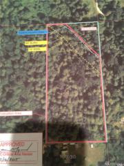 0 NE 124th St, Duvall, WA 98019 (#890416) :: Ben Kinney Real Estate Team