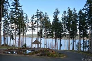908 139th St Ct NW, Gig Harbor, WA 98332 (#890676) :: Ben Kinney Real Estate Team