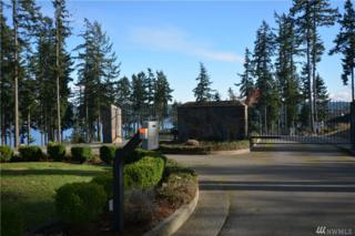 904 139th St Ct NW, Gig Harbor, WA 98332 (#890690) :: Ben Kinney Real Estate Team