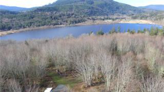 999 Crocker Lake Rd, Quilcene, WA 98376 (#892349) :: Ben Kinney Real Estate Team
