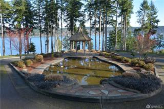 907 139th St Ct NW, Gig Harbor, WA 98332 (#892352) :: Ben Kinney Real Estate Team