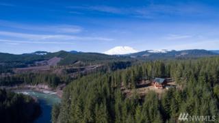 51 Phyllis Ann Ct, Cougar, WA 98616 (#896901) :: Ben Kinney Real Estate Team