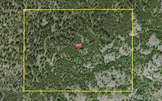 23 Big Dog Rd, Tonasket, WA 98855 (#900449) :: Ben Kinney Real Estate Team