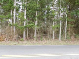 101 Xx Dry Lake Rd, Camano Island, WA 98282 (#901718) :: Ben Kinney Real Estate Team