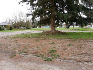 204 Susan St, Centralia, WA 98531 (#904771) :: Ben Kinney Real Estate Team