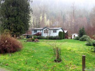 14941 Mountain View Lane, Rockport, WA 98283 (#907760) :: Ben Kinney Real Estate Team