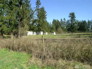 20824 Sweeney Rd SE, Maple Valley, WA 98038 (#909734) :: Ben Kinney Real Estate Team