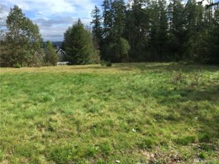 142 N Andrew, Port Townsend, WA 98368 (#911021) :: Ben Kinney Real Estate Team