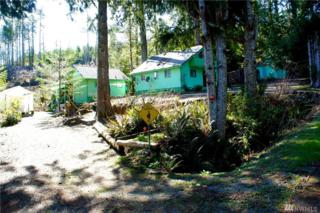 951 Mountain Trail Rd, Brinnon, WA 98320 (#911063) :: Ben Kinney Real Estate Team