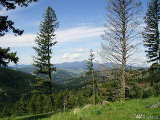 0-TBD Horseshoe Mt. Rd, Wauconda, WA 98859 (#911537) :: Ben Kinney Real Estate Team