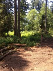0-Lot 2 30th Ave Nw, Gig Harbor, WA 98332 (#913411) :: Ben Kinney Real Estate Team