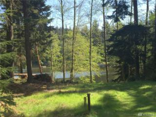 40 Trout Lane, Orcas Island, WA 98245 (#916806) :: Ben Kinney Real Estate Team