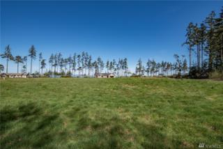 9999 Walker St, Port Angeles, WA 98363 (#917592) :: Ben Kinney Real Estate Team