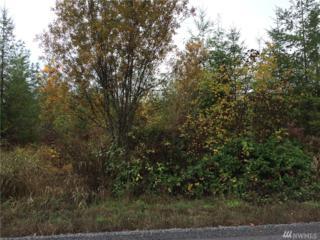 4403 370th St E, Eatonville, WA 98328 (#919297) :: Ben Kinney Real Estate Team