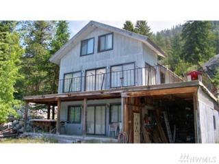93-B Wannacut, Oroville, WA 98844 (#920183) :: Ben Kinney Real Estate Team
