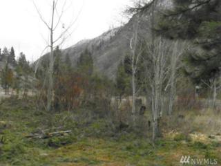 24 Stormy Creek Usfs 5395 Rd, Entiat, WA 98822 (#924711) :: Ben Kinney Real Estate Team