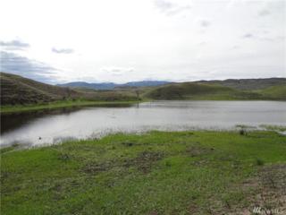 22222 Evan's Lake Rd, Riverside, WA 98849 (#924987) :: Ben Kinney Real Estate Team